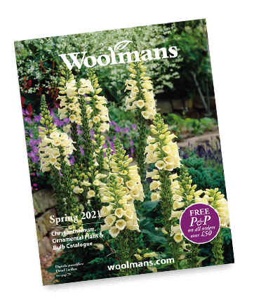 Woolmans Plant Catalogue